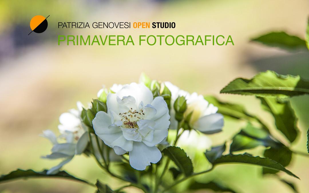 Primavera Fotografica